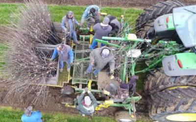 TIF accompagne la création d'une innovation agricole